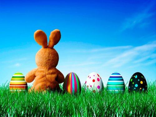 Easter Egg Anyone?